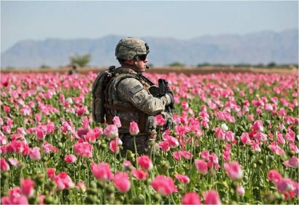 http://eplume.files.wordpress.com/2011/03/afghanistan-opium-soldier.jpg